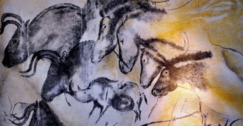 Aurignacian cave paintings, Chauvet Cave. Image Credit: Wikimedia Commons.