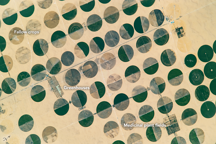 An astronaut aboard the International Space Station captured this photograph of circular farming patterns in Sharq El Owainat in southwest Egypt. The remote agricultural outpost in the Sahara Desert lies approximately 290 kilometers (180 miles) from the nearest city and 210 kilometers (130 miles) from the Toshka lakes. Image Credit: NASA.