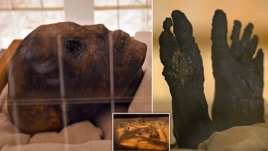 Photo of The Face and Feet of King Tut Revealed After decade Long Restoration of His Tomb