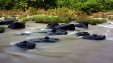 Photo of Indian River Drains Out Revealing Incredible Ancient Secrets
