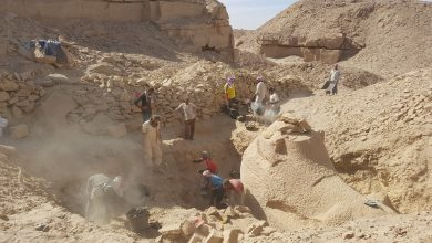 Photo of Researchers in Egypt Find a '3,350-Year-Old Workshop Were Sphinxes were Made'