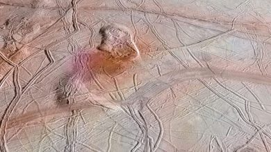 The surface of Jupiter's Icy Moon Europa. NASA/JPL-CALTECH/KEVIN M. GILL.
