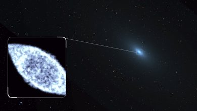 Photo of 'The Cow Explosion': And How Astronomers Are Solving an Astronomical Mystery
