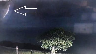 Photo of Police Release Eerie Footage of UFO Hovering in The Sky Above Australia