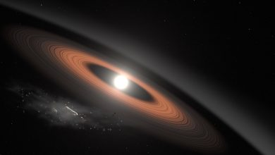 Photo of Researcher Finds the Oldest and Coldest White Dwarf, and It Doesn't Fit our Models