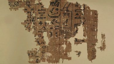 Photo of This 4,500-Year-Old Papyrus Is the Only Text That Mentions How the Great Pyramid was Built