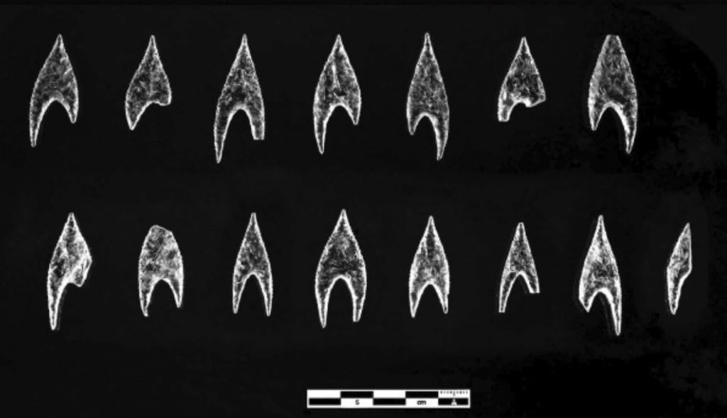 Arrowheads from the Montelirio tholos (selection). Image Credit: Miguel Angel Blanco de la Rubia.