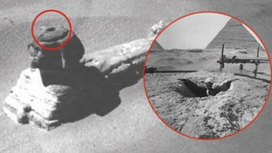 Photo of The Riddle of the Sphinx: Evidence of Hidden Doorways Beneath Legendary Monument