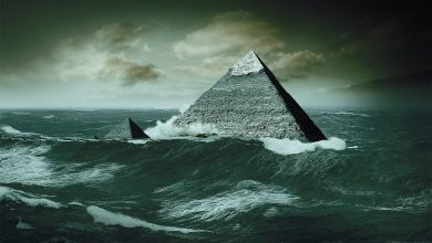 Photo of Fossil Discovery Suggests the Pyramids and Sphinx Were Submerged Under Water