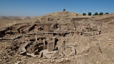 Photo of Ancient Temple Unearthed Could be Oldest On Earth Even Older Than Göbekli Tepe