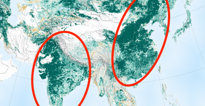 Photo of NASA Study Finds Earth Is Greener Thanks to Tree-Planting Projects in China and India