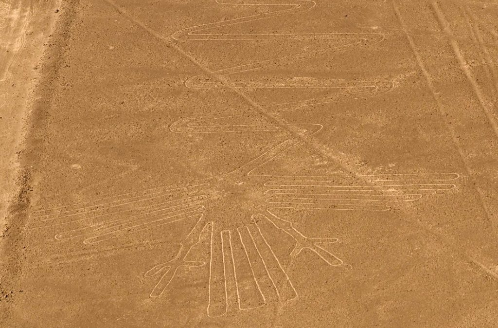 Линиите от Наска. Чаплата в Наска.  Кредит на изображението: Wikimedia Commons.