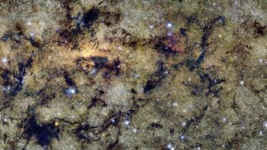 The original image is almost 25 gigabytes in size. Image Credit: ESO.