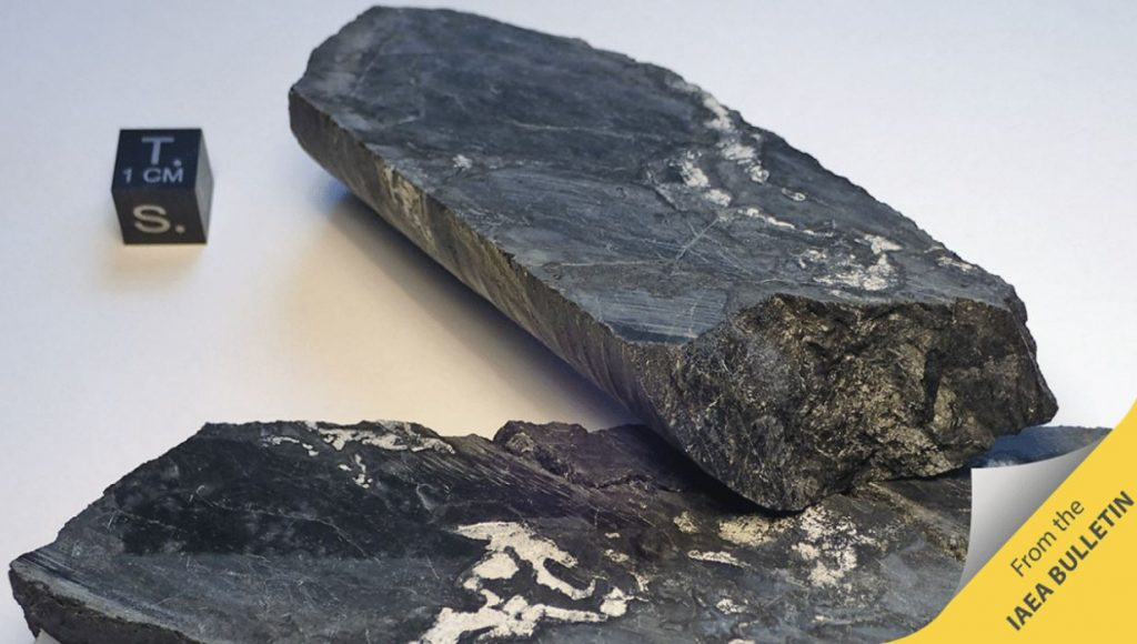 A rock sample from Oklo in Gabon, the world's oldest and only natural reactor. Image Credit: IAEA Bulletin.