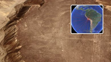 Photo of Here's What Happens When The Nazca Lines are Plotted Over the Entire Planet