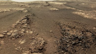 Photo of This is Opportunity's Last 360 Panorama Image of Mars, and it Reveals Fascinating Features