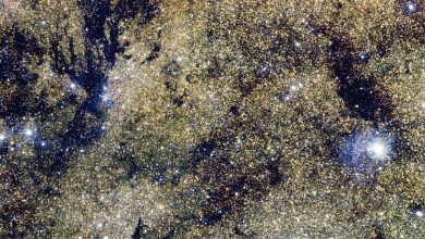 84 Million stars in one image. Image Credit: ESO.