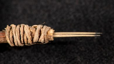 Photo of Researchers Find 2,000-Year-Old Tattoo Needle