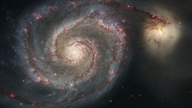 Photo of The Mystery Behind the Structure of Spiral Arms in Disk Galaxies Revealed in New Study