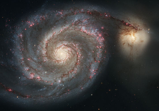 The Whirlpool Galaxy (Spiral Galaxy M51, NGC 5194), a classic spiral galaxy located in the Canes Venatici constellation, and its companion NGC 5195. Image Credit: Wikimedia Commons.