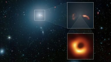 Photo of This is The Galaxy From Which  Scientists Snapped the First Black Hole Image