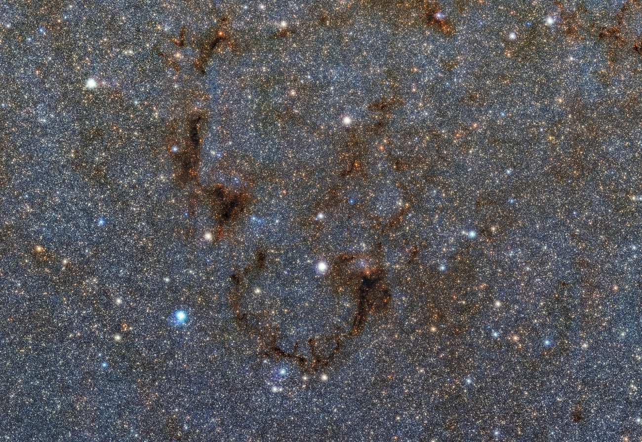 A small portion of a gigapixel color mosaic of the Milky Way's heart. Image Credit: Wikimedia Commons.