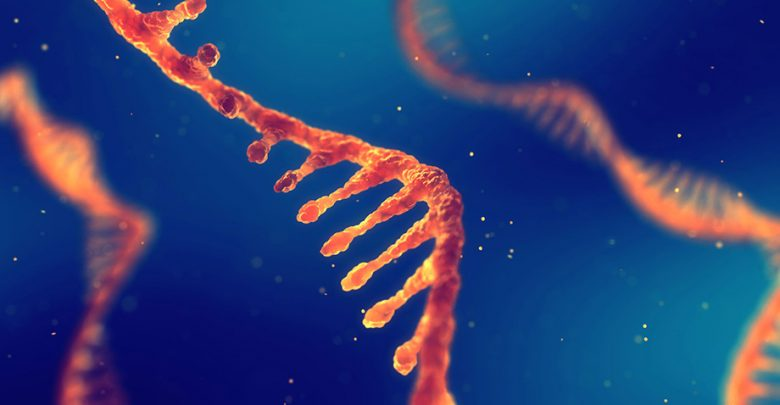 Photo of The Building Blocks of DNA and RNA May Have Appeared Together Before Life Began on Earth