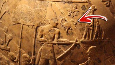 Photo of Before the Pharaohs: Ancient Egypt Was Ruled by a Scorpion King, Reveals Ancient Text
