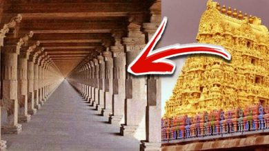 Photo of This Ancient Hindu Temple is Home to the 'Infinity Corridor'