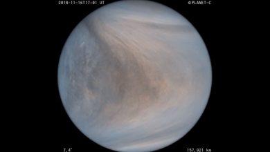 Photo of New Video Shows Venus' Atmosphere in Unprecedented Detail