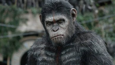 Photo of Wicked! Chinese Geneticists Insert Human Brain Genes into Monkeys to Make Them Smarter
