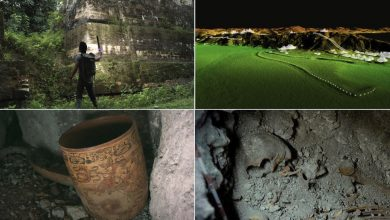 Photo of 3 Previously Unknown Pyramids, Lost Tombs, and Precious Maya Artifacts Discovered by Experts
