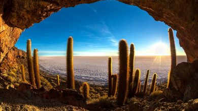 Cave on the Cactus island in Uyuni Salt. Image Shutterstock.