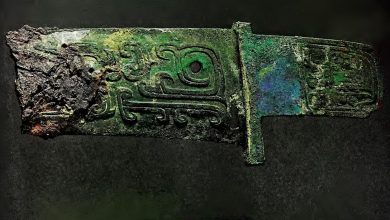 Ancient Chinese Axe crafted from Meteorite Iron. This image was extracted from the paper: 'Two Early Chines Bronze Age Weapons With Meteoritic Iron Blades. 1971.