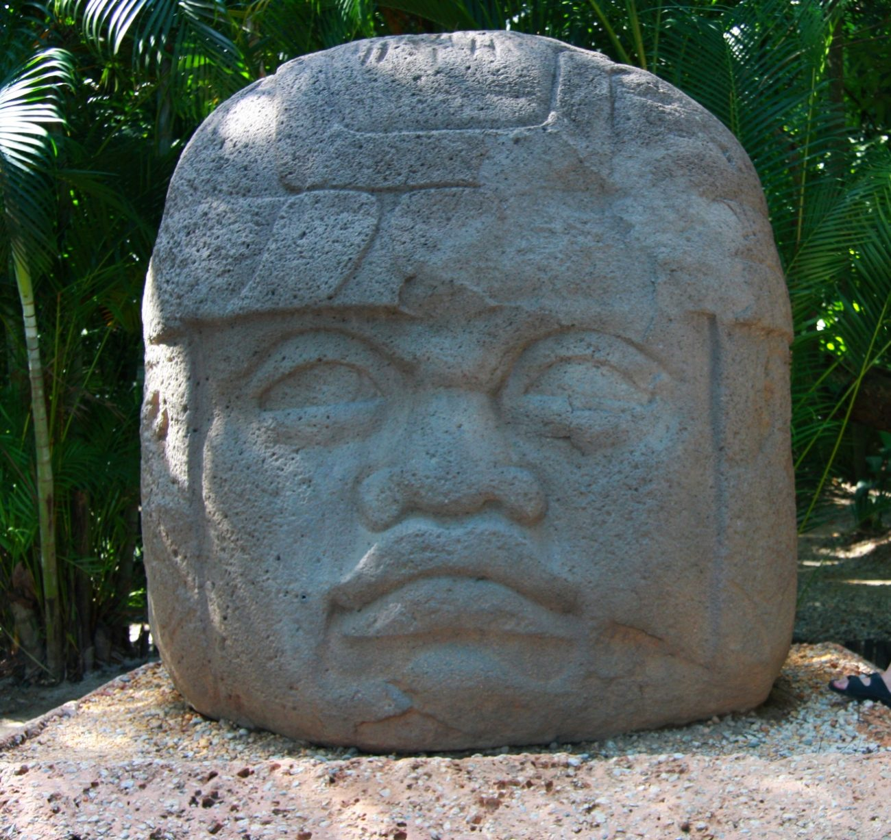 Head of Olmeca in Villhermosa Museum. Image Credit: Wikimedia Commons.