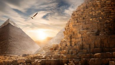 Photo of 'Lost Town of Pyramid Builders' Excavated Near the Great Pyramid of Giza