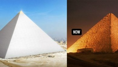 Photo of The 7 Wonders of the Ancient World Brought Back to Life in Amazing 3D Reconstruction