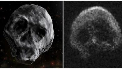 Photo of Here Are 6 of the Weirdest Asteroids Ever Found