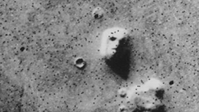 Photo of NASA Hits Back at Claims That Life Was Found on Mars in the 1970's