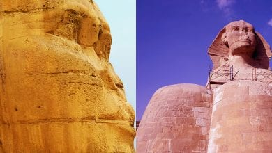 Photo of 30 Striking Images That Show the Great Sphinx of Giza in Unprecedented Detail