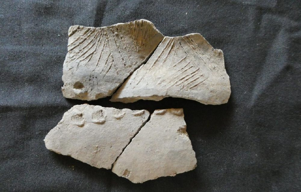 A shard of an ancient ceramic vessel from the insufficiently studied San Pedro complex found on Real Alto site, Ecuador. FEFU press office.