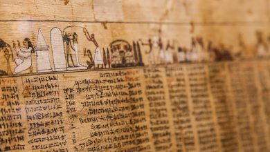 Photo of Here are 5 Ancient History-Changing Papyri Discovered in Egypt