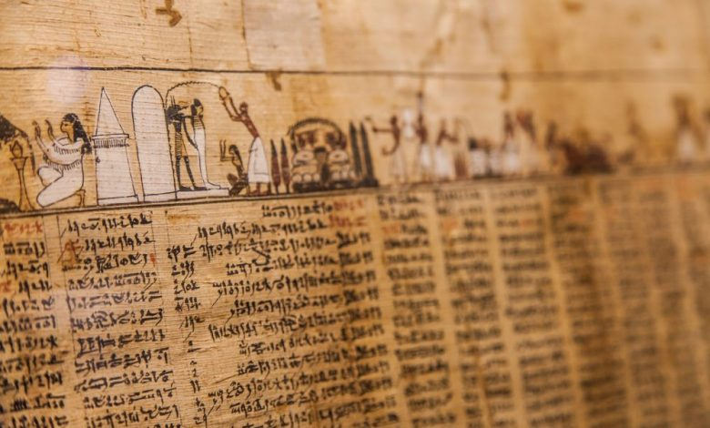 Ancient Egyptian Papyrus. Shutterstock.