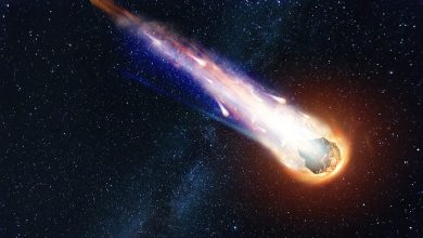 Artists rendering of an asteroid in Space. Shutterstock.