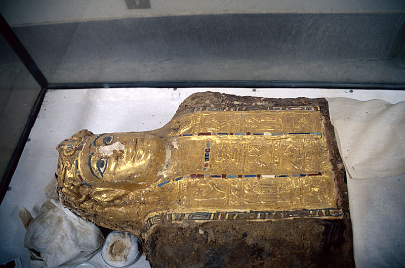 One of the mummies discovered in the Valley of the Golden Mummies. Image Credit: Wikimedia Commons / CC-BY 3.0.