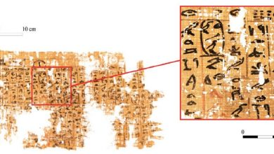 Photo of Translation of the Oldest Ancient Egyptian Papyrus Offers Clues About Great Pyramid