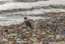Photo of Sensational Way to Convert Plastic Waste Into Fuel and Electricity Found
