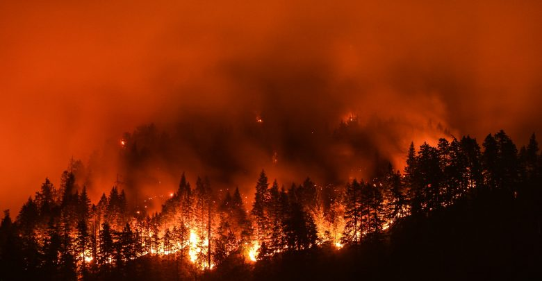 An image of wildfire consuming a forest. Shutterstock.