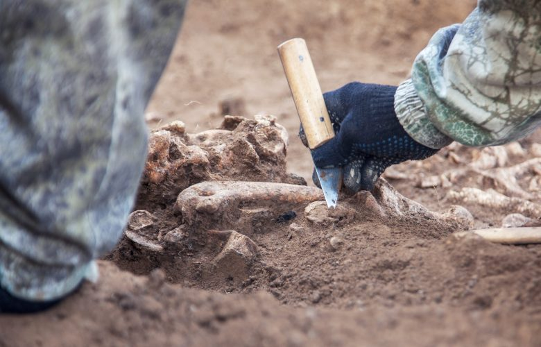 Image showing an archaeologist at work. Shutterstock.