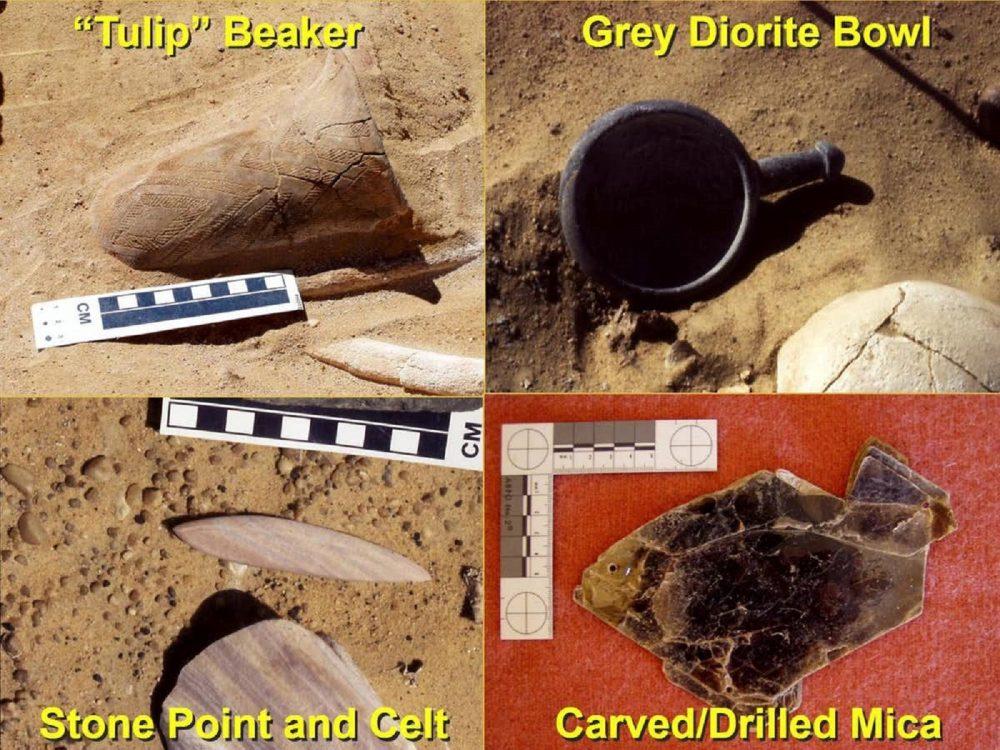 Grave artefacts from 2001-2003 excavations. Image Credit: Joel D. Irish, Czekaj- Zastawny Agnieszka, Jacek Kabacinski / The Conversation.